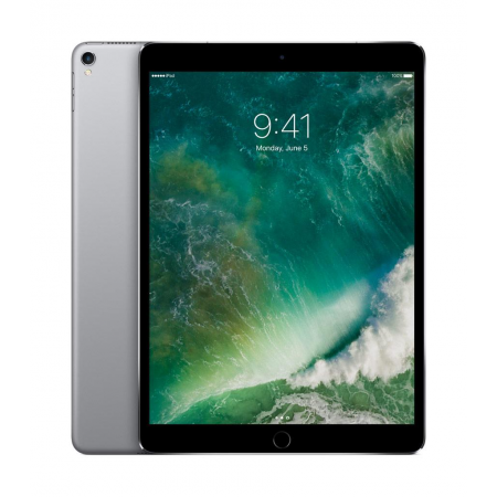Apple iPad Pro 12.9 4G 256Go Gris sidéral