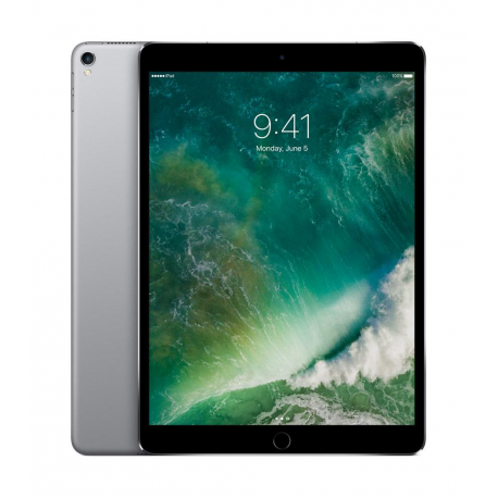 Apple New iPad Pro 12.9 4G 256Go Gris sidéral